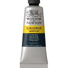 Paynes Gray 60ml Acrylic